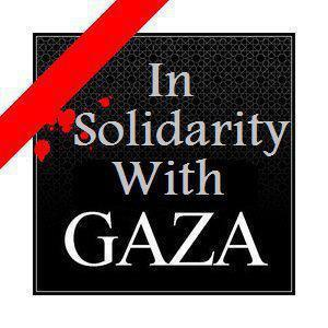 In+solidarity+with+Gaza.jpg