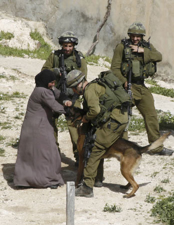 Isnt Israel doing terrorism in Palestine - Media Pictures Photos_30.jpg